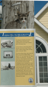 One of the islands many feline citizens atop a historical marker.