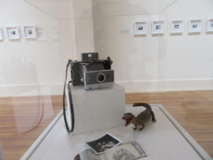 Exhibit at Florence County Museum