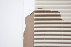 Artwork by Leyden Rodriguez-Casanova A Degraded Door and Blinds Miami.