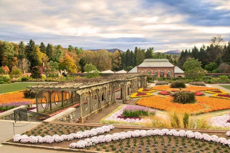 Fall View of the Conservatory and walled gardens. A visit in itself at Biltmore.!