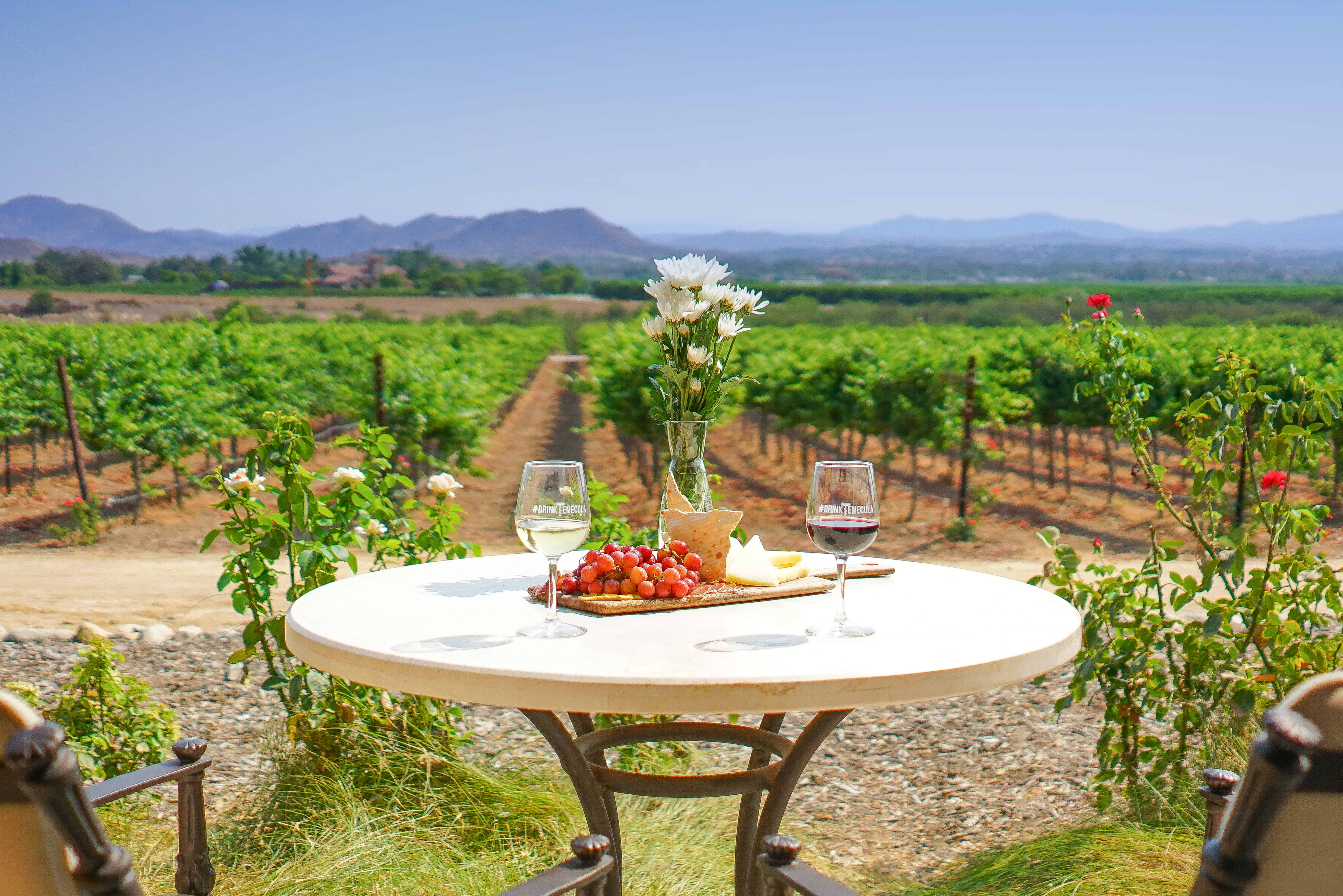 Enjoying Wine and cheese overlooking the Temecula Valley wine country