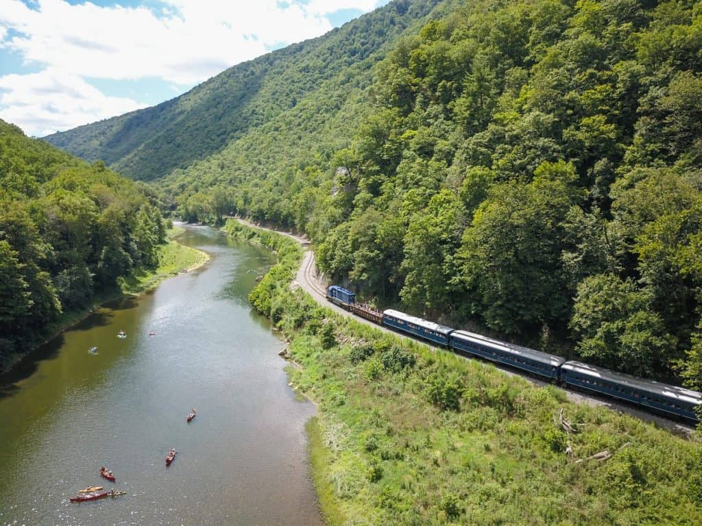 Bald eagles nest in the mountains and are often spotted by passengers on the Potomac Eagle train.
