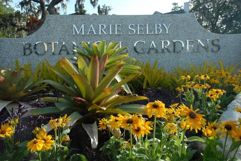 Marie Selby Gardens - Sarasota Beyond the Beaches
