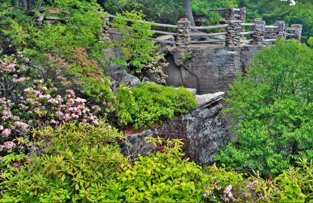 Coopers Rock Overlook