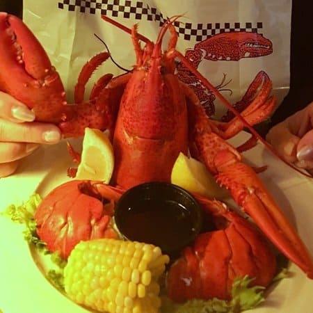 Napi's lobster